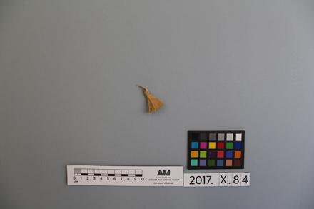 2017.x.84, fragment