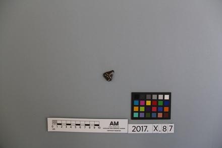 2017.x.87, fragment