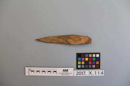 fragment, 2017.x.114