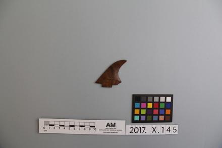 fragment, 2017.x.145