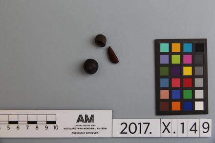 fragments, 2017.x.149