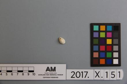 fragment, 2017.x.151