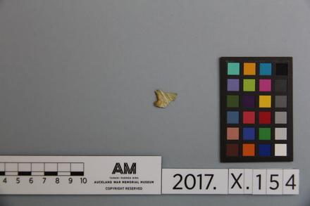 fragment, 2017.x.154