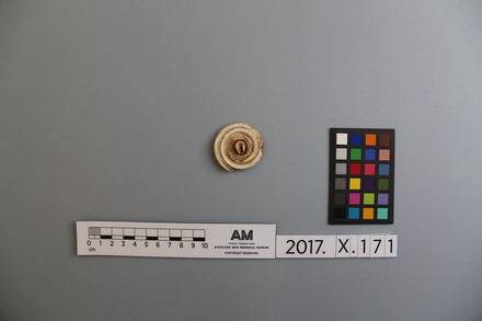 fragment, 2017.x.171