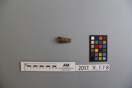 fragment, 2017.x.178