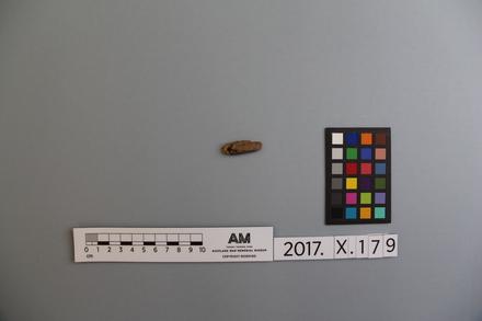 fragment, 2017.x.179