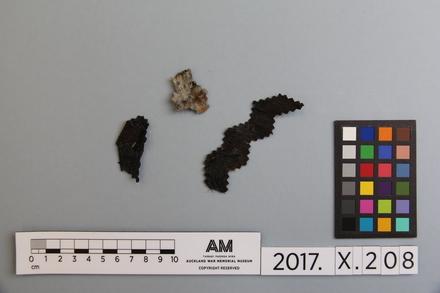 fragment, 2017.x.208