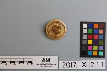 fragment, 2017.x.211