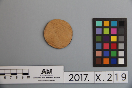 fragment, 2017.x.219