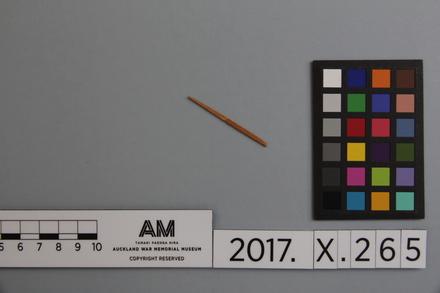 fragment, 2017.x.265