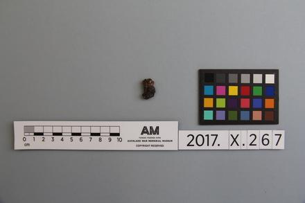 fragment, 2017.x.267