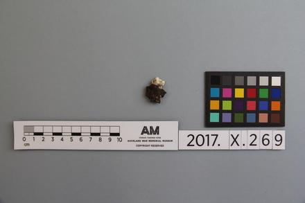fragment, 2017.x.269
