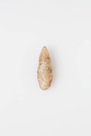projectile point, 1932.233, 18045.4, Photographed by Andrew Hales, digital, 21 Feb 2018, © Auckland Museum CC BY