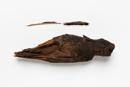 mummy, bird, 12966, Photographed by Jennifer Carol, digital, 23 May 2018, © Auckland Museum CC BY