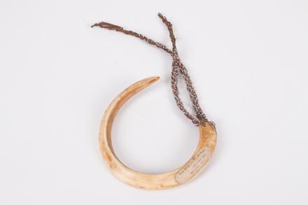 ornament, neck, 14826.1, Cultural Permissions Apply