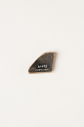 sherd, ceramic, 1969.119, 41693, Photographed by Andrew Hales, digital, 28 Sep 2018, © Auckland Museum CC BY