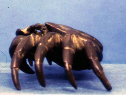 figure, crab