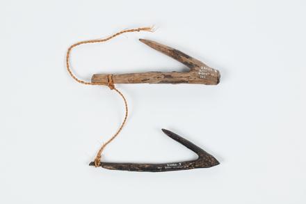 Kai n taura, 1936.295, 22886.2, Photographed by Daan Hoffmann, digital, 27 Nov 2018, Cultural Permissions Apply