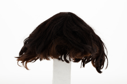 Wig, 1936.295, 24158, 202, Photographed by Andrew Hales, digital, 15 Nov 2018, Cultural Permissions Apply
