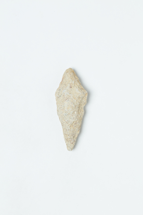 projectile point, AR7959.14, 97, © Auckland Museum CC BY
