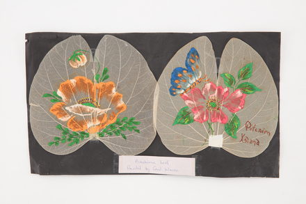 leaves, dried, 1980.31, 48774, Cultural Permissions Apply