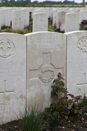 Headstone of Private George Dominic Hill (55494). Haringhe (Bandaghem) Military Cemetery, Poperinge, West-Vlaanderen, Belgium. New Zealand War Graves Trust (BEBP2193). CC BY-NC-ND 4.0.