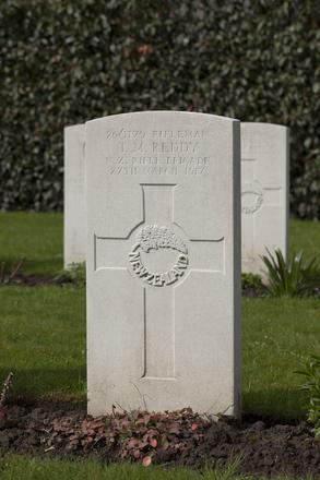 Headstone of Rifleman Thomas Michael Reddy (26/1179). Berks Cemetery Extension, Comines-Warneton, Hainaut, Belgium. New Zealand War Graves Trust (BEAK7113). CC BY-NC-ND 4.0.