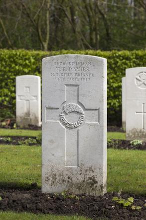 Headstone of Rifleman Herbert Edward Davies (26061). Strand Military Cemetery, Comines-Warneton, Hainaut, Belgium. New Zealand War Graves Trust (BEEB7223). CC BY-NC-ND 4.0.