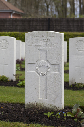 Headstone of Private Frank Wells (31008). Strand Military Cemetery, Comines-Warneton, Hainaut, Belgium. New Zealand War Graves Trust (BEEB7177). CC BY-NC-ND 4.0.