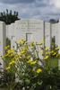 Headstone of Lieutenant Gerald Horton Fell (10/2816). Wulverghem-Lindenhoek Road Military Cemetery, Heuvelland, West-Vlaanderen, Belgium. New Zealand War Graves Trust (BEEW8575). CC BY-NC-ND 4.0.