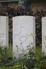 Headstone of Private William Thompson (49488). La Brique Military Cemetery No. 2, Ieper, West-Vlaanderen, Belgium. New Zealand War Graves Trust (BECC0718). CC BY-NC-ND 4.0.