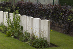 Headstone of Private William Thompson (49488). La Brique Military Cemetery No. 2, Ieper, West-Vlaanderen, Belgium. New Zealand War Graves Trust (BECC0722). CC BY-NC-ND 4.0.