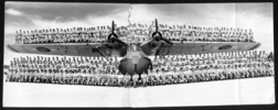 Group: Shot featuring 138 men of No. 6 (Flying Boat) Squadron, standing on the wing of a Catalina flying boat, taken at Halaro Bay, Florida Island, Solomon Islands, 1944. - This image may be subject to copyright