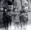 Soldier and horses, WW1: Gunner Hecla Wallis with Biddy and Kitty, 14 January 1919. - No known copyright restrictions