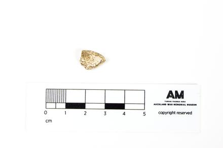 2013.36.62; worked bone; Hahei T11/326