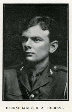 Portrait of H. A. Forrest. Auckland Grammar School chronicle. 1917, v.5, n.2. Image has no known copyright restrictions.