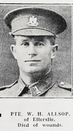Portrait of William Henry Alsop, Auckland Weekly News, 9 January 1919. Auckland Libraries Heritage Collections AWNS-19190109-41-44. Image has no known copyright restrictions.